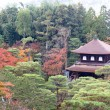 Stock Photo: Japanese temple in autumn garden