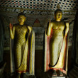 Ancient Buddha image in Dambulla Rock Temple caves, Sri Lanka - Stock fotografie
