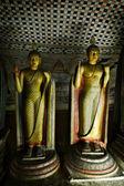 Ancient Buddha image in Dambulla Rock Temple caves, Sri Lanka — Stockfoto