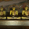 Ancient Buddha imageы in Dambulla Rock Temple caves, Sri Lanka — Stock Photo