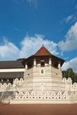 Diş tapınağı. sri lanka — Stok fotoğraf