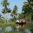 Houseboat on Kerala backwaters, India - Stock Photo
