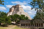 Mayan pyramid (Pyramid of the Magician, Adivino) in Uxmal, Mexic — Stock Photo