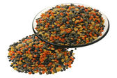Bowl of uncooked lentils — Stockfoto