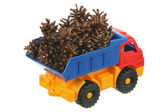 Pine cones in the truck — Stock Photo