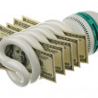 Fluorescent lamp and US dollars - Stock Photo