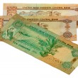 Stock Photo: 20 Dirhams