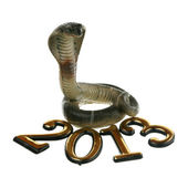 2013 - year of the Snake — Stock Photo
