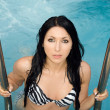 Royalty-Free Stock Photo: Portrait of the beautiful sexy brunette in pool