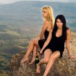 Stock Photo: Two young women with a champagne bottle sit on a rock
