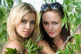 Two beautiful women — Foto Stock