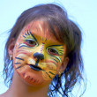 Stock Photo: Lion Face Paint