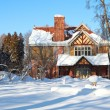 Cottage Winter Wonderland — Stok Fotoğraf #5301837