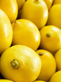 Lemon vertical macro — Stock Photo