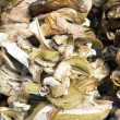 Dry mushrooms — Stock Photo