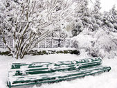 Trees and bench in snow — Stock Photo