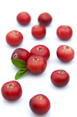 Sweet cranberry — Stock Photo