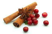 Cranberry and spices — Stock Photo