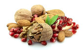 Pomegranate and nuts — Stock Photo