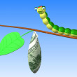 Caterpillar on twig — Stock Photo