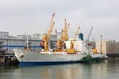 Sea Port of Odessa, Ukraine — Stock Photo