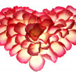 Stock Photo: Heart from petals of rose