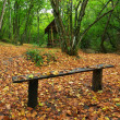 Bench in autumn forest - ストック写真