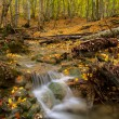 Autumn river — Stock Photo #4086004
