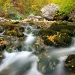 Autumn river — Stock Photo