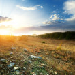 Sunset and big green meadow — Stock Photo