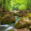 Spring river in canyon — Stock Photo #5019709