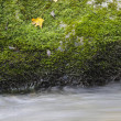 Boulder in the river — Stock Photo