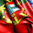 Flag of Portugal — Stock Photo