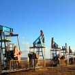 Stock Photo: Working oil pumps in row