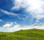 Green grass hill — Stock Photo