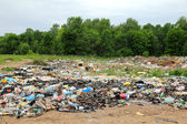 Garbage in landfill near forest — Stock Photo