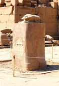 Scarabaeus monument in karnak temple — Stock Photo