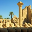 Stock Photo: Column and statues of sphinx in karnak temple