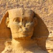 Egypt sphinx face and pyramid in Giza — Stock Photo #5369711