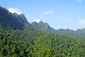 Rainforest hills on Langkawi island — Stock Photo