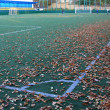 Stock Photo: Small soccer field