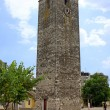 Sahat Kula, an Ottoman clock tower in Podgorica, Montenegro — Stock Photo