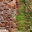 Red brick wall — Foto Stock #4852832