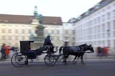 Horse-driven carriage in Vienna — Stock Photo