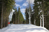 Ski track of Bukovel resort, Ukraine — Stock Photo