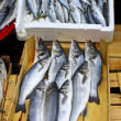 Fresh sprats on a market stall - Stock Photo