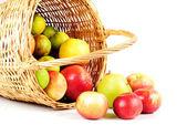 Apple in basket — Stock Photo