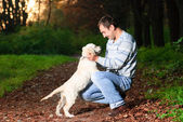 Golden retriever and man in park — Stock Photo