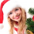 Christmas tree and santa girl — Stock Photo #4420569