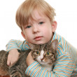 Boy with an angry cat — Stock Photo